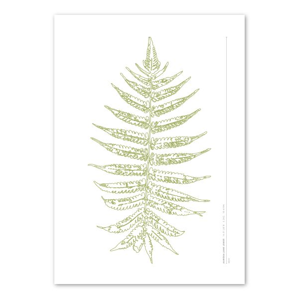 Euphoria House Botanical Custom Birth Print Baby Fern