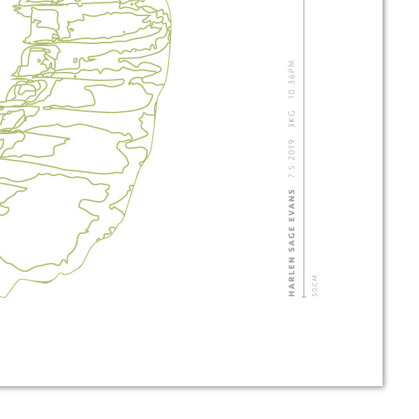 Euphoria-House-Botanical-Custom-Birth-Print-Baby-Banana-Leaf-closeupname