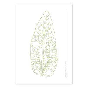Euphoria-House-Botanical-Custom-Birth-Print-Baby-Banana-Leaf-main