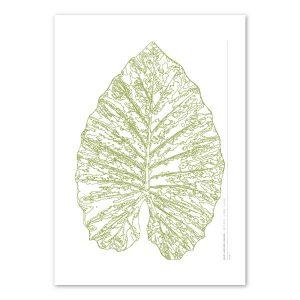 Euphoria-House-Botanical-Custom-Birth-Print-Baby-Elephant-Ear