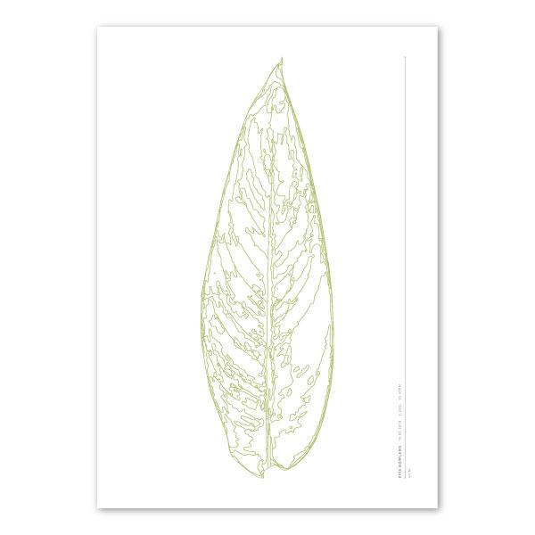 Euphoria-House-Botanical-Custom-Birth-Print-Baby-Heliconia-Leaf-main