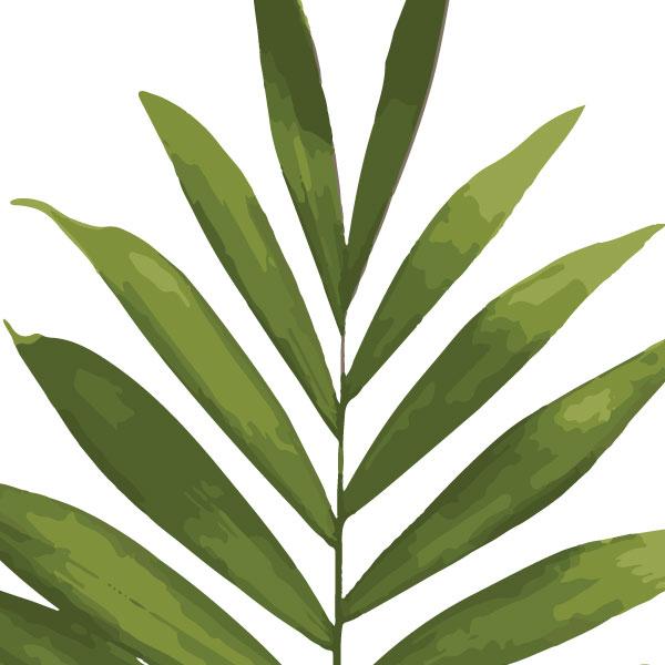 euphoria-house-palm-frond-birth-print-full-leaf-closeup