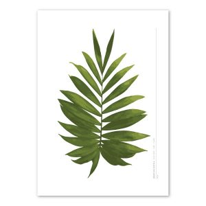 euphoria-house-palm-frond-birth-print-full-leaf-main