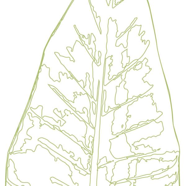 scandi-banana-leaf-art-print-a4-a3-closeup
