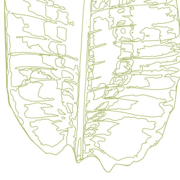scandi-banana-leaf-art-print-a4-a3-closeup2