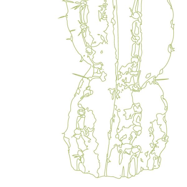 scandi-cactus-art-print-a4-a3-closeup2