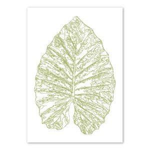 scandi-elephant-ear-leaf-art-print-a4-a3