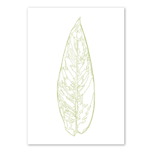 scandi-heliconia-leaf-art-print-a4-a3