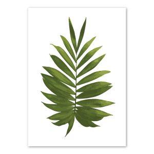 palm-frond-art-print-a4-a3