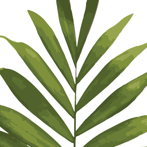 palm-frond-art-print-a4-a3-closeup