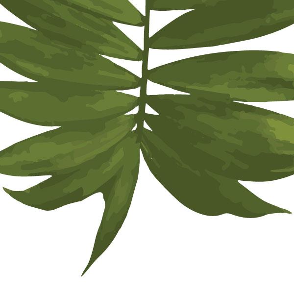 palm-frond-art-print-a4-a3-closeup2