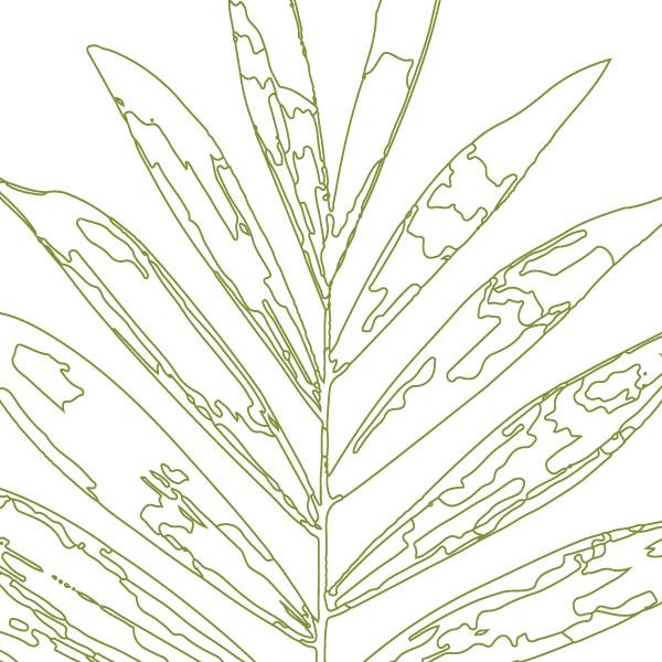 scandi-palm-frond-art-print-a4-a3-closeup